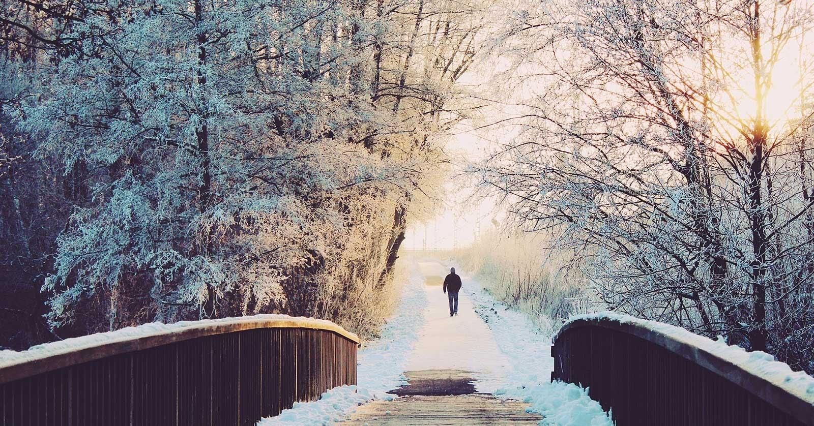 Der Weg deiner Seele